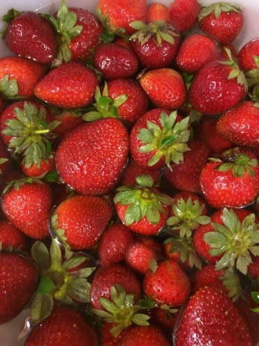 FreshStrawberries
