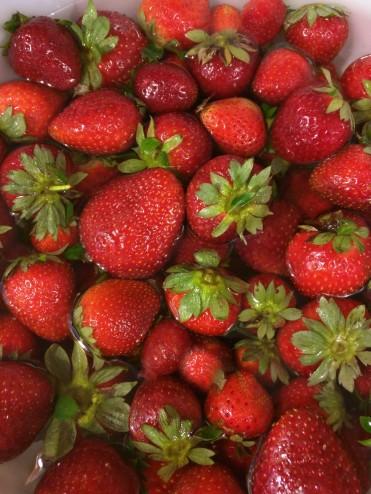 FreshStrawberries